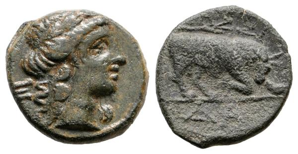 M0000004983 - Celtiberian coins